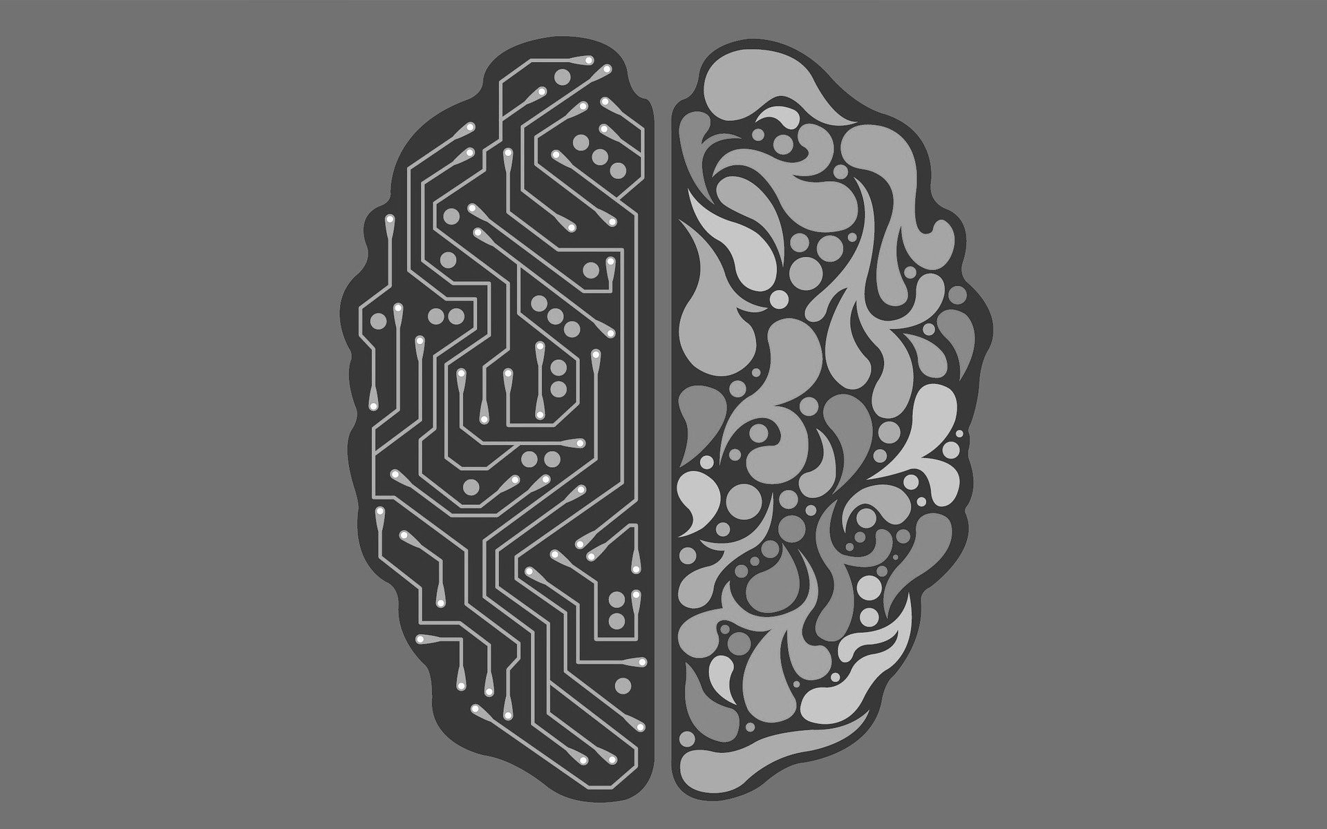 brain - hersenen